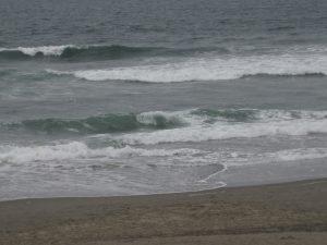 ocean-beach-golden-gate-park-8